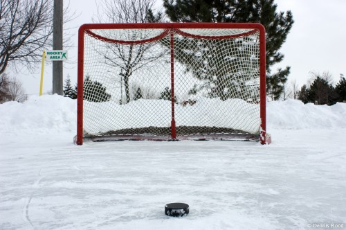 hockey_net_and_puck_2428